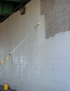 Wall Coating Elastomeric